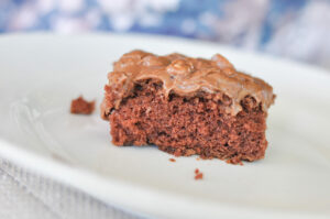 YaYa's Famous Chocolate Texas Sheet Cake Recipe